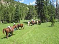 Gallatin Valley Back Country Horsemen
