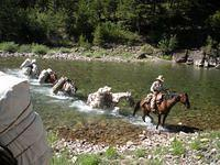 Flathead Back Country Horsemen